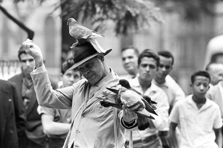 Apresentação de artista de rua com pombos no centro do Rio de Janeiro RIO-ANTIGO-08
